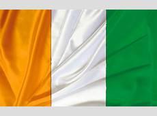 CAN la Côte d'Ivoire revient au score ! L'Algérie