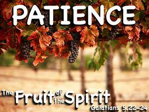 The Fruit of the Spirit: Patience