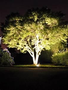 Eclairer son jardin de mani re cologique le journal du for Spot eclairage arbre exterieur