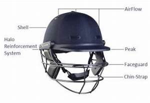 Main Components Of A Standard Cricket Helmet