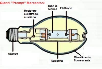 Lada Ai Vapori Di Mercurio by Lade Al Sodio E Ioduri Metallici Wikiplants