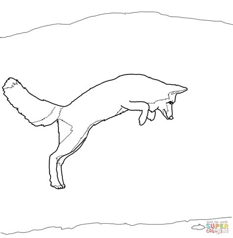 Arctic Fox Jump Coloring Page Free Printable Coloring Pages