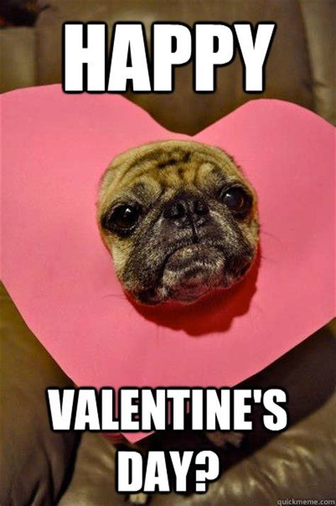 Happy Valentines Day Meme - 56 best images about pugs and more on pinterest funny pug meme and puppys