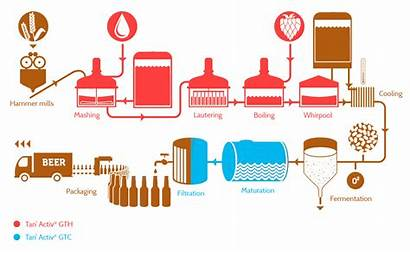 Process Brewery Tannin Tannins Usage Dosages Application