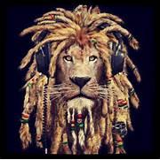 rasta lion on T...
