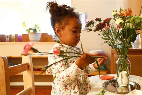 Montessori Programmes | Association Montessori Internationale