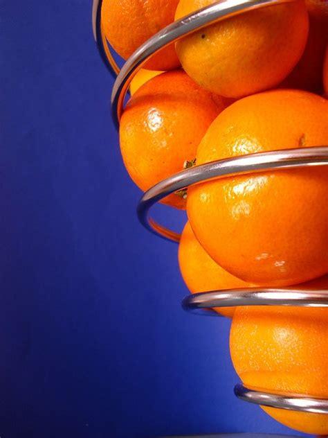 1000 images about orange blue flowers on pinterest