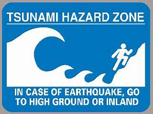 Surviving A Tsunami—Lessons from Chile, Hawaii, and Japan