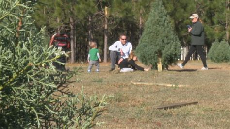 booth s christmas tree farm continues family traditions for many wpde