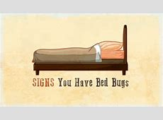 how to tell if you have bed bug bites beware bed bug