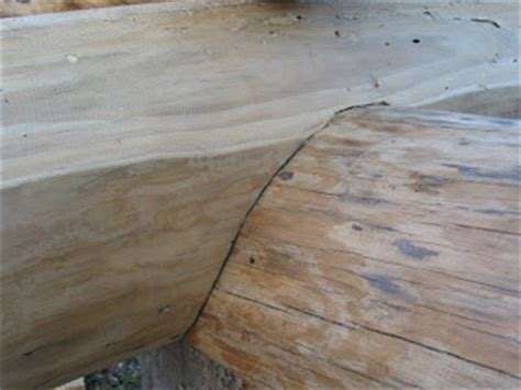 Image result for log with notch cut into a round item
