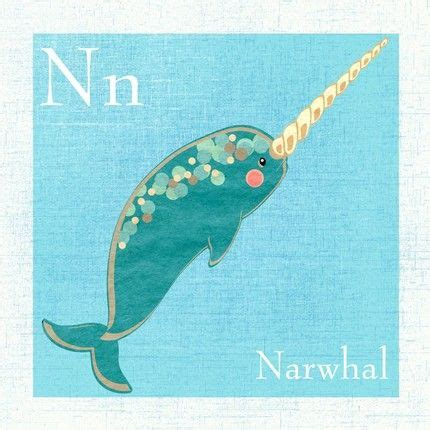 narwal images  pinterest narwhals collar
