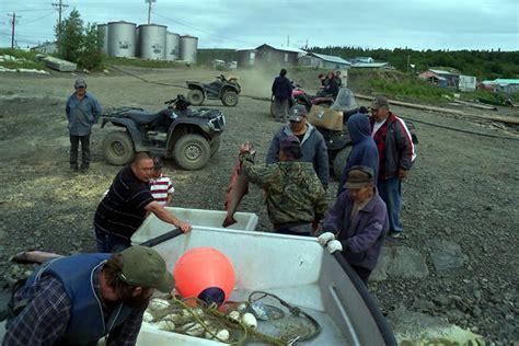 yukon pilot media alaska fisheries sonar alaska