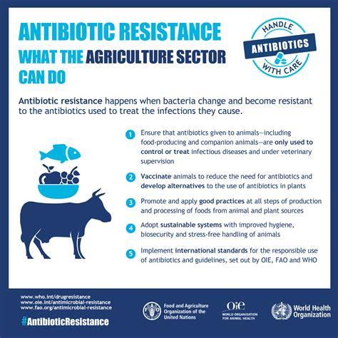 WHO | Infographics: Antibiotic resistance