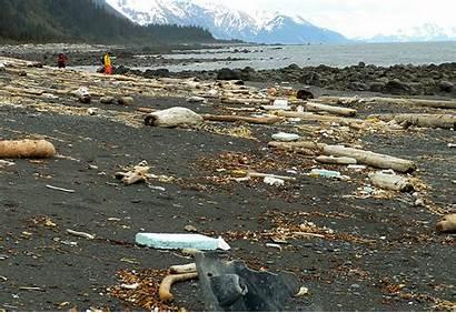 Tsunami Debris Japan Juneau Ak Alaska Island