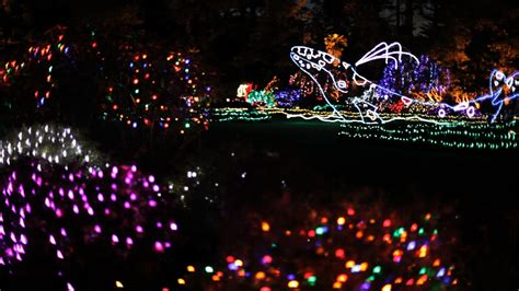 collection pilot mountain christmas lights pictures best