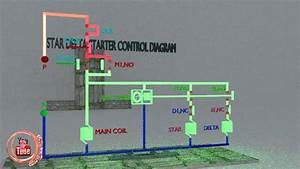 Star Delta Starter Control Diagram Animation Explain How