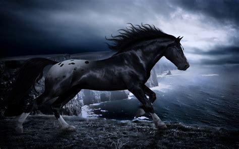 Dark Horsesea Sea Coast Wallpaper Hd