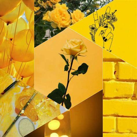 Yellow Aesthetic Yellow Aesthetic Aesthetics Amino