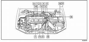 2001 Hyundai Elantra Canister Purge Valve Location