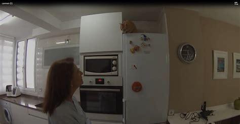 adaptar  mueble en la parte de arriba del frigorifico