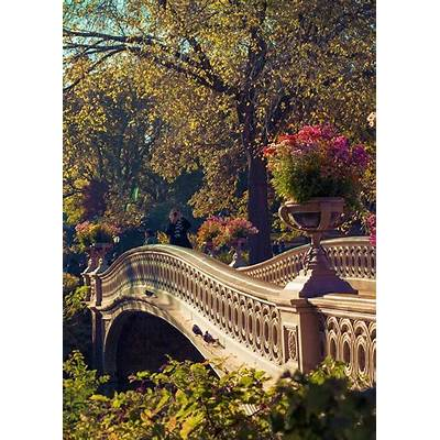Bow Bridge in Central Park Manhattan New York City. I'll
