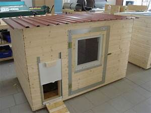 Hühnerstall Bauen Tipps : h hnerstall f r 8 10 h hner tiere pinterest shops ~ Markanthonyermac.com Haus und Dekorationen