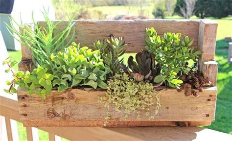 wooden succulent planter 13 diy planters for your home diy to make