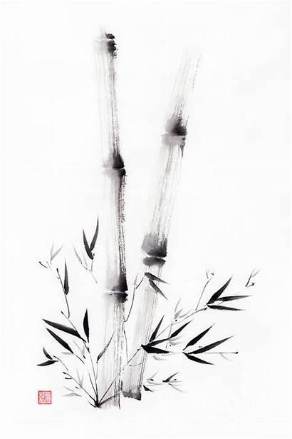 Ink Painting Sumi Bamboo Asian Prints Awen
