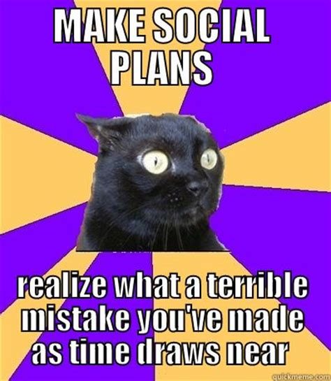 Social Anxiety Meme - lol how sad is it that i am totally the social anxiety cat funny things pinterest the