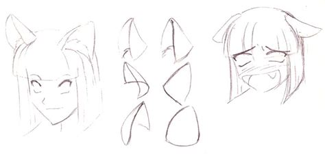 Anime Manga Drawing Different Types Of Ears
