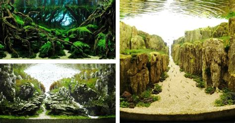 Japanese Aquascape by The Majestic Aquariums Of The Tokyo Aquascape Union