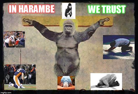 Funny Harambe Memes - 29 funniest harambe memes jokes gifs photos images picsmine