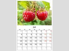 Kalender Monat Juli · Kostenloses Foto auf Pixabay