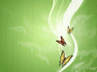wallpaper keren lucu  hp enter  blog