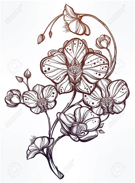 Tatouage Fleur D Orchidée  Galerie Tatouage En Dessin D