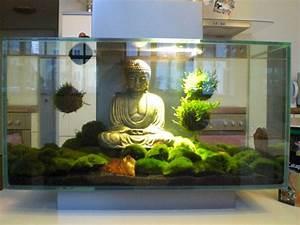 Deco Aquarium Zen : buddha moss balls zen aquarium saltwater aquarium ~ Melissatoandfro.com Idées de Décoration