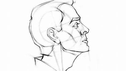 Side Profile Face Drawing Woman Female Draw