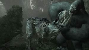 Peter Jackson39s King Kong XBOX 360 Games Torrents