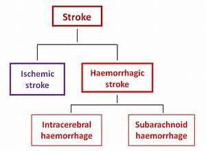 Hemorrhagic Stroke Pathophysiology Diagram