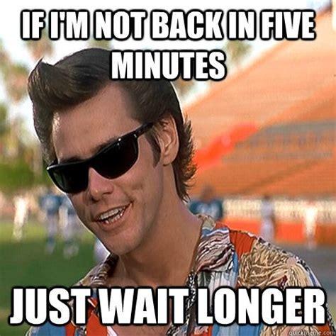 Ace Ventura Memes - 17 best images about jim carrey on pinterest jim carey liar liar and the mask