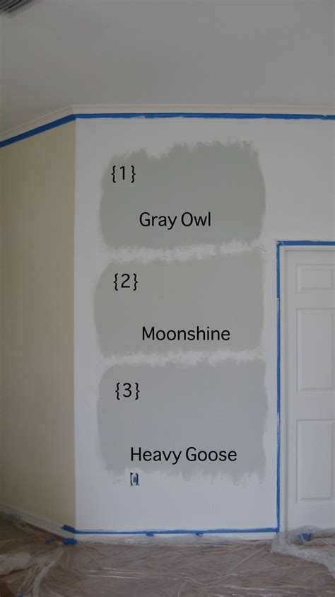 beautiful gray owl benjamin for your interior paint
