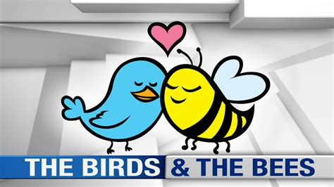 the birds and the bees evil english