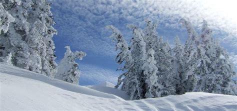subarctic climate zone tourist maker