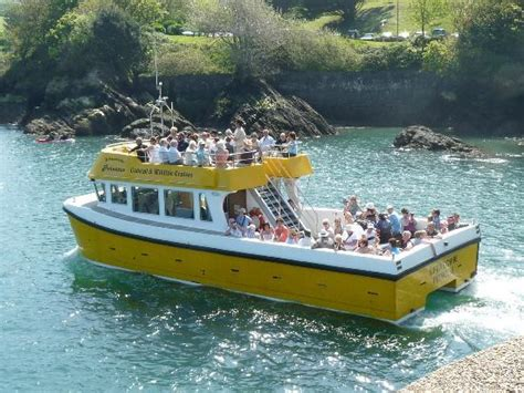 Boat Trip Ilfracombe by Ilfracombe Princess Updated 2018 Top Tips