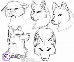 How To Draw A Anime Wolf Face