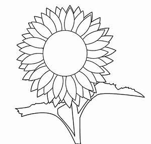 Free Sunflower Line Art  Download Free Clip Art  Free Clip
