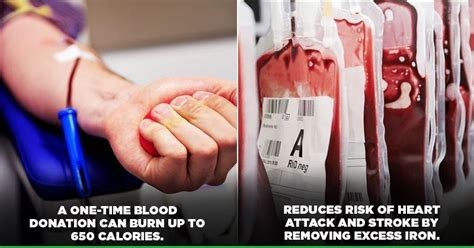 the surprising health benefits of donating blood you should about indiatimes