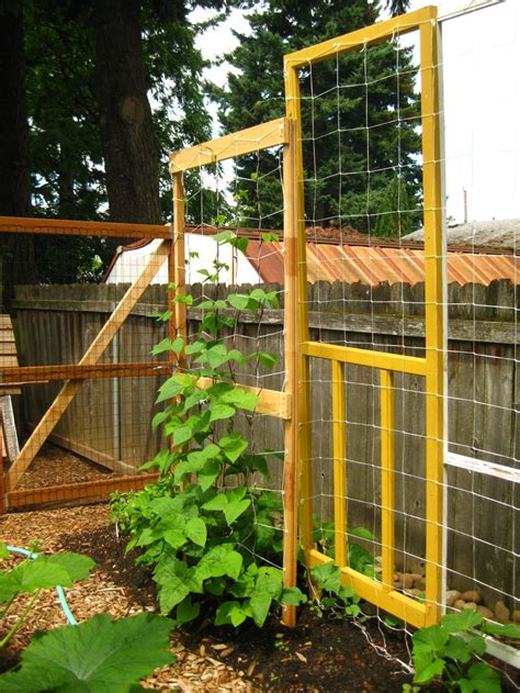 Cool Trellis Idea And I Just Picked Up A Screen Door In