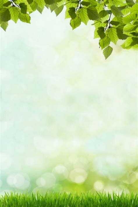 free page backgrounds and borders 20 free Cliparts ...